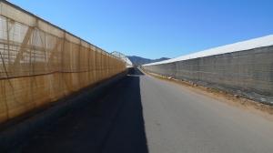 lane 4