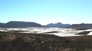 long view 4